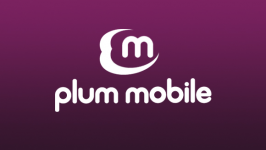 Plum Actualizaciones De Memoria Para Smartphone
